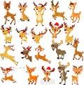 Cartoon reindeer christmas collection set Royalty Free Stock Photo