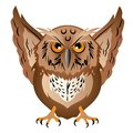 Wise owl with the big head, a sharp beak and predatory claws.