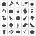Basic vegetables icons vector collection black set Stock Photos