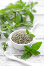 Basil fresh and dry in a bowl Royalty Free Stock Photography