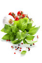 Basil and fresh vegetables leaves on white background Royalty Free Stock Photos