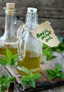 Basil olive oil in the glass bottle and fresh Stock Image