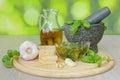 Basil pesto with ingredients Royalty Free Stock Photo