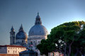 Basilica di santa maria della salute venice italy the of st mary of health or at a summer evening with tree in venezia Royalty Free Stock Photo