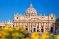 Basilica of Saint Peter in the Vatican with spring flowers, Rome, Italy Royalty Free Stock Photo