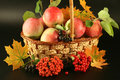 Basket with apples Stock Photo