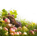 Basket of apples and grapes on the grass Royalty Free Stock Image