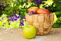 Basket with apples on stone surface on beautiful flower garden over Royalty Free Stock Photo