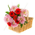 Basket with autumn bouquet Royalty Free Stock Photo