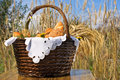 Basket with bakery products on the background of wheat ears. Royalty Free Stock Photo