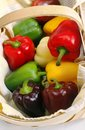 Basket of Bell Peppers Stock Photos