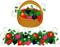 Basket of berries Stock Photos