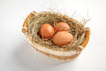 Basket with brown chicken eggs studio photography of in a wicker on white background Stock Photos