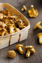 Basket of chanterelles ginger on rustic brown wooden background Royalty Free Stock Images