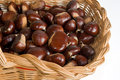 Basket with chestnuts Stock Image