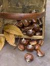 Basket of chestnuts Stock Photo