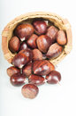 Basket of chestnuts full isolated background Royalty Free Stock Images