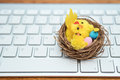 Basket with chicken and eggs on keyboard
