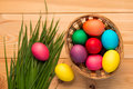 Basket with colorful Easter eggs and lush grass