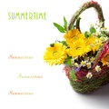 Basket of colorful summer flowers Royalty Free Stock Photo