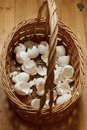 Basket of crushed egg shell Royalty Free Stock Photo