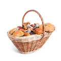 Basket with different mushrooms from forest closeup on white background Royalty Free Stock Photography