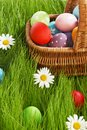 Basket of easter eggs on green grass and flowers Royalty Free Stock Photos