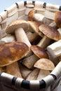 Basket with eatable mushrooms Stock Image