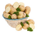 Basket filled with Potatoes and Parsley Stock Image