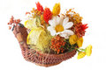 Basket with flowers Royalty Free Stock Photography