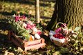 Basket with flowers and raspberries in morning forest Royalty Free Stock Photo