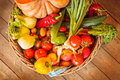 Basket with fresh organic vegetables Royalty Free Stock Photo