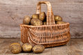 Basket with fresh potatoes Royalty Free Stock Photography