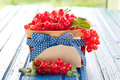 Basket with fresh red currants Royalty Free Stock Photo