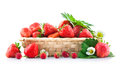 Basket fresh strawberry with green leaf and flower on white background Stock Images