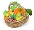 Basket fresh vegetables Royalty Free Stock Photo