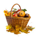 Basket with fruit and vegetables, isolated Royalty Free Stock Photos