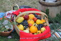 Basket with fruits autumn exposed on a country celebraion Stock Image