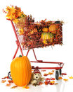 Basket Full of Autumn Royalty Free Stock Images