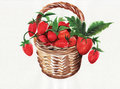 Basket full of berries wicker ripe Royalty Free Stock Image