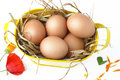 Basket full of eggs and wildflowers five in a with straw petals flowers the field Stock Photo