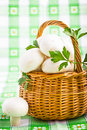 Basket full of fresh champignon mushrooms Royalty Free Stock Photography
