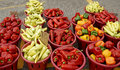 Basket full of fresh sweet and hot Peppers Royalty Free Stock Photo