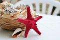 Basket full of seashells beautiful marine still life little Stock Photography