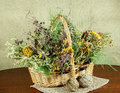 Basket with healing herbs. Dried grass.