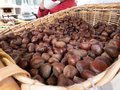 Basket of Italian chestnuts for sale at the mountain festivals Royalty Free Stock Photo