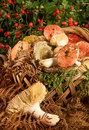 Basket with mushrooms on wooden table Royalty Free Stock Photo