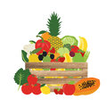 Basket of natural, fruit and vegetable, food vector illustration Royalty Free Stock Photo