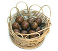 Basket with nuts Royalty Free Stock Photo