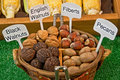 Basket of Nuts Royalty Free Stock Photography